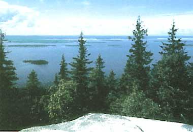 Photo of Lake Pielinen