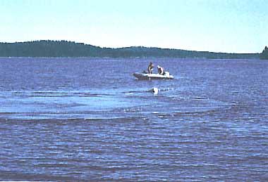 Photo of Lake Paajarvi