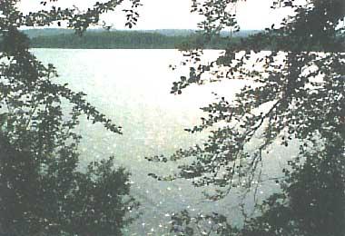 Photo of Lake Ree