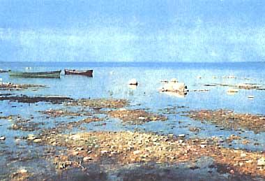 Photo of Lake Sniardwy