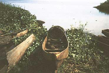 Photo of Lake Kyoga