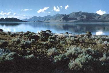 Photo of Pyramid Lake
