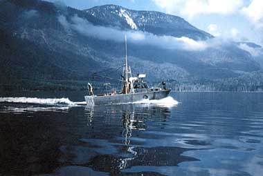 Photo of Great Central Lake