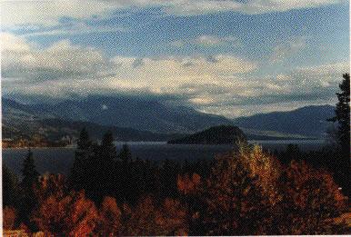 Photo of Shuswap Lake