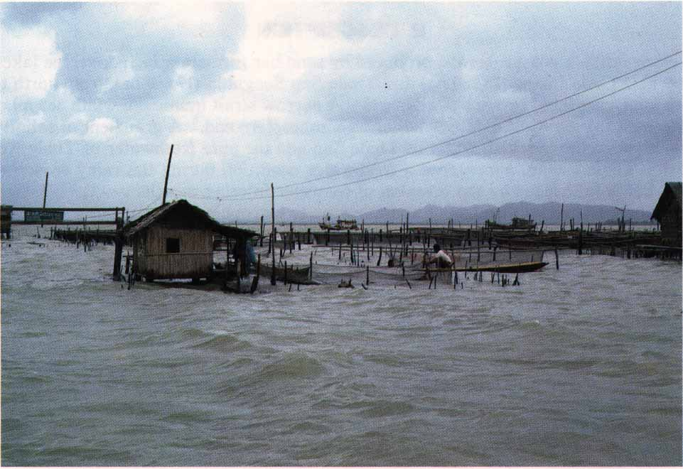 Photo of Lake Songkhla