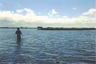 Photo of Lake Rocha