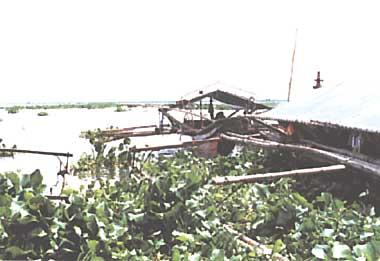 Photo of Laguna de Bay