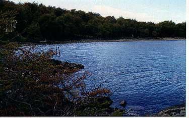 Photo of Lake Fontana