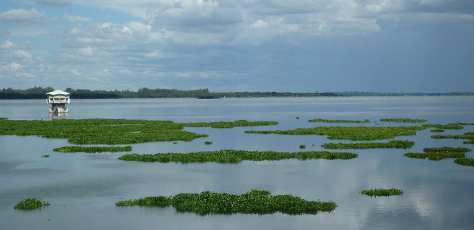 Photo of Lake Chivero